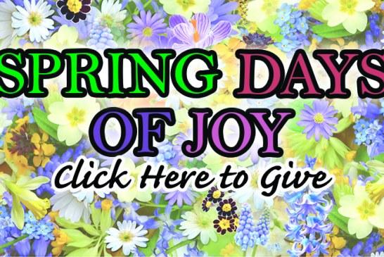 Spring Days Of Joy Give